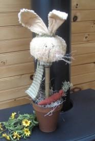 Bunny Thyme